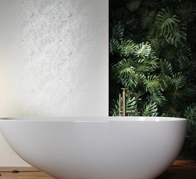 Rośliny w łazience – sposób na ożywienie aranżacji